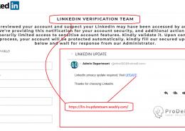 Update linkedin fals pentru furt de date logare
